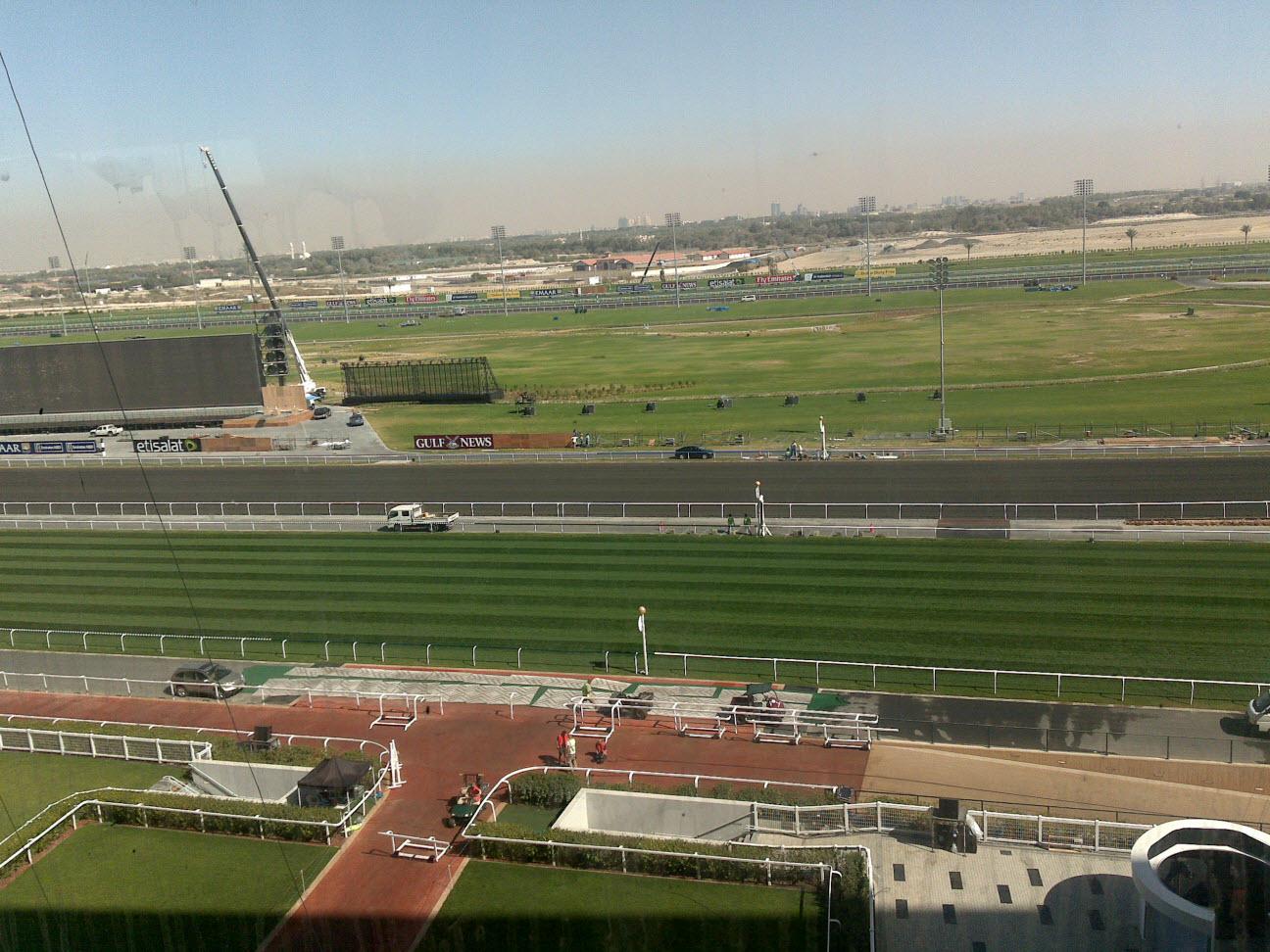 Dubai Horse Race 2011 (8)