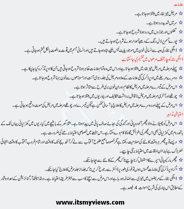 Dengue_Fever_dengue_virus_in_urdu_Symptoms_treatments_in_Pakistan_2