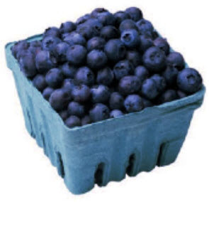 Blueberries best food for brain health