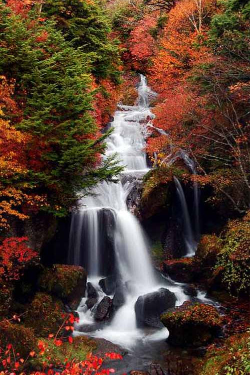 best-waterfall-photo