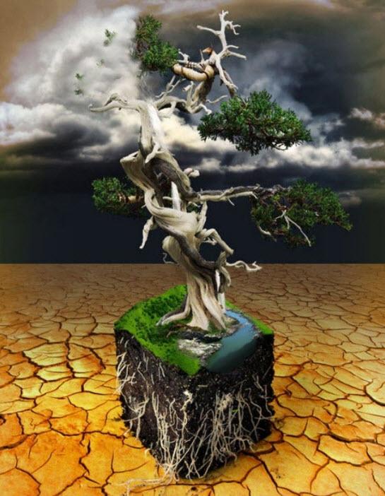 Photo-Manipulation-artwork-2012
