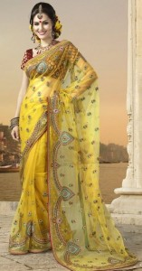 beautiful-saree-design-2012