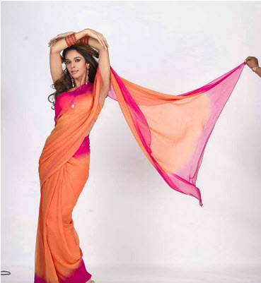 mallika-sherawat-in-saree-indian-saree