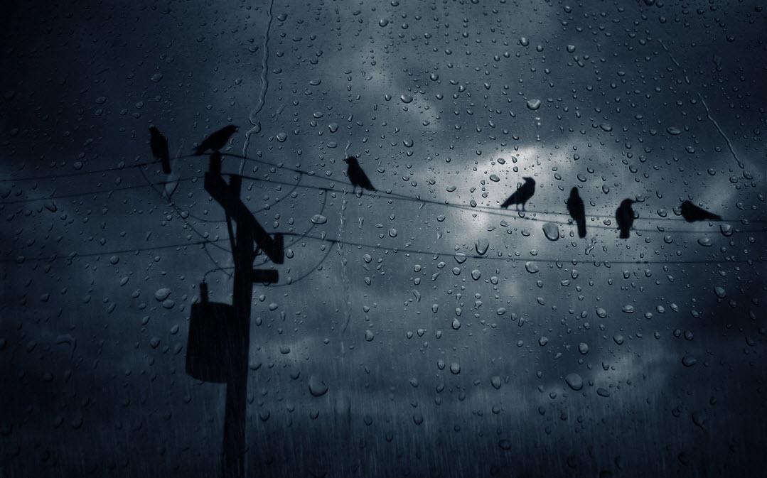 rain-effect-in-adobephotoshop-2012