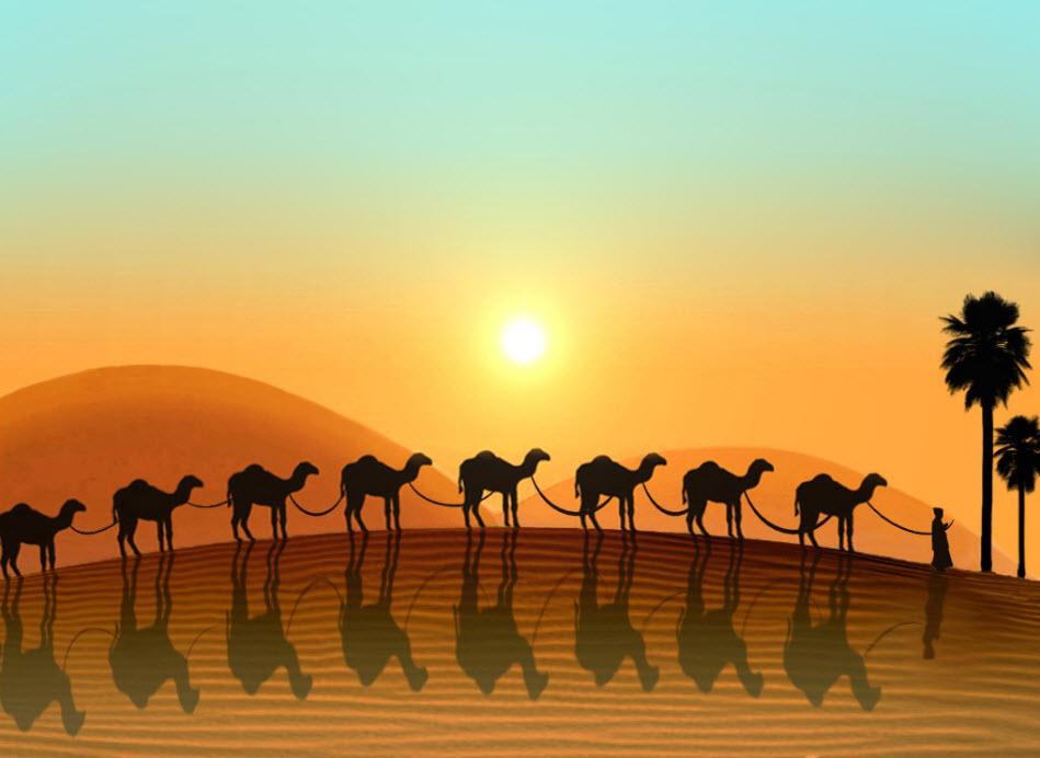 Dubai-desert-camel-HD-wide-screen-wallpaper-screen-saver-2013
