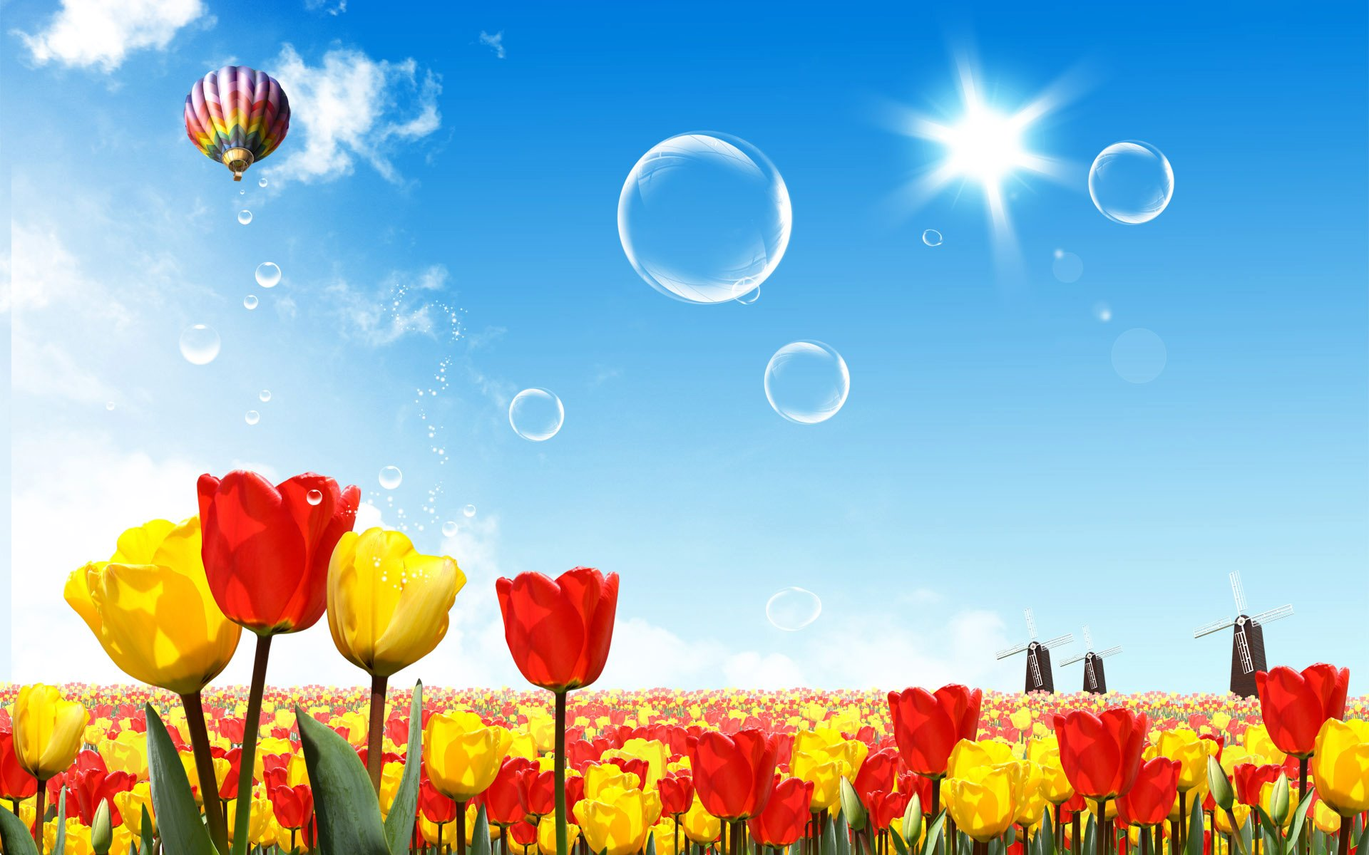 most beautiful colorfull flowers airbaloon picture wallpaper screensaver