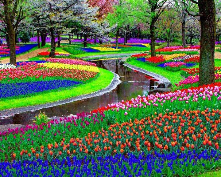 world-most-beautiful-garden-picture-wallpaper-2012-2013