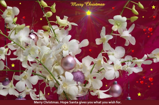 Latest-merry-christmas-wallpaper-ecards-2012-2013