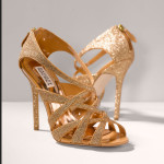 Beautiful High Heel Shoes 2013 for Woman at wedding and party ceremony