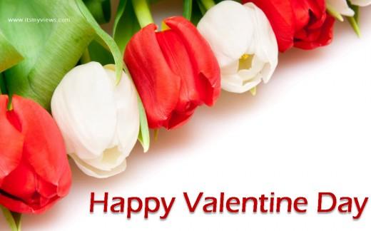 Valentine-Day-2013 Wallpaper of Rose