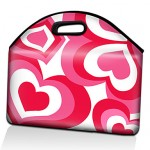 Stylish Laptop Hand-bags For Girls 2013-2014