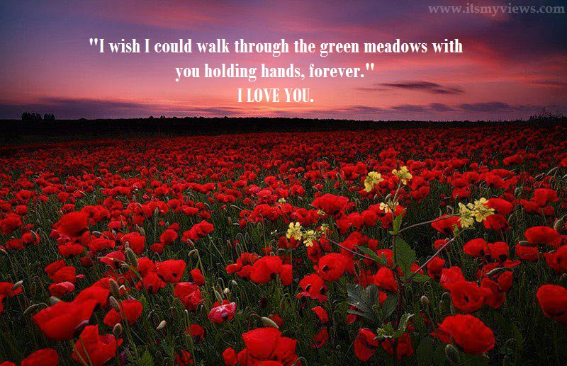 Latest Most Beautiful Red Rose Pictures With Romantic Love Quotes 2016 U2013  Itsmyviews.com
