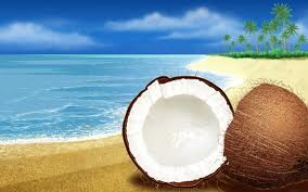 latest-beach-pictures-with-coconut-trees-2013-2014