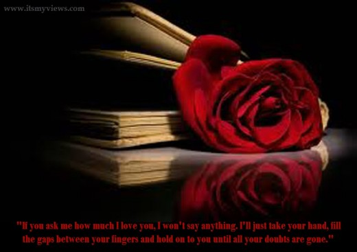 red-rose-romantic with quotes -picture-with-book-2013-2014