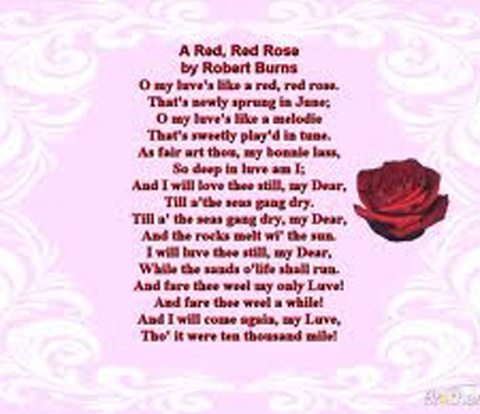 Latest Most Beautiful Red Rose Pictures with Romantic Love Quotes ...